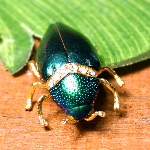 Jewel Beetle Pins