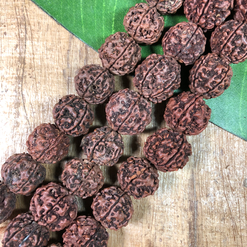 Rudraksha Beads - 9 Pieces