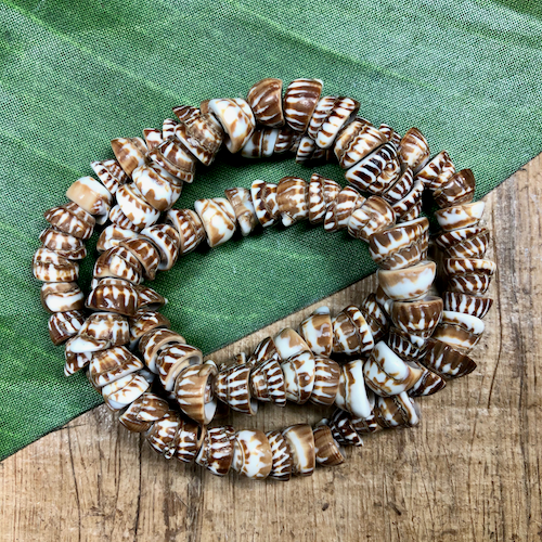 Brown Striped Shell - 1 Strand