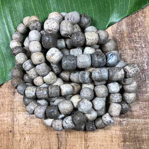 Fossilized Stegadon Beads