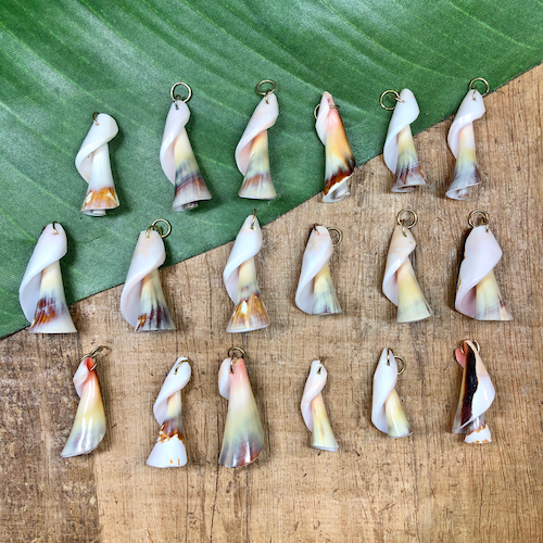 Twisted Shell Pendants - 7 Pieces
