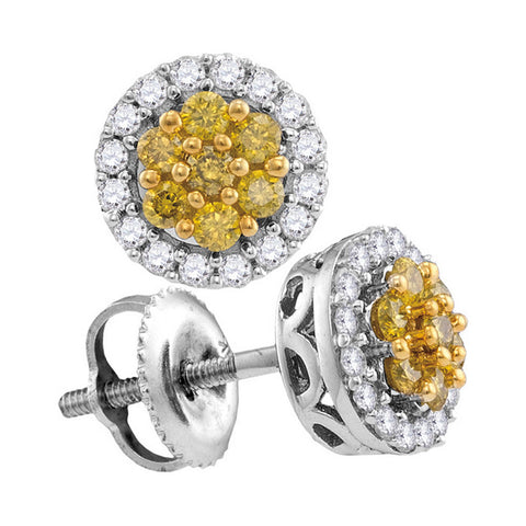 10kt White Gold Womens Round Yellow Color Enhanced Diamond Cluster Earrings 1/2 Cttw