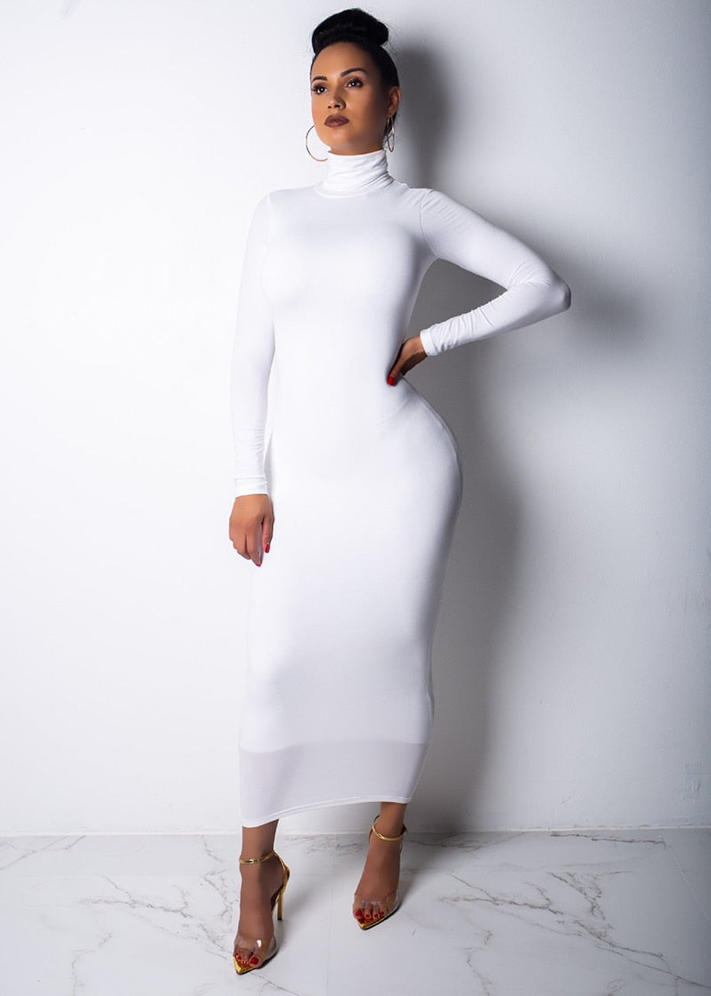 Basic Bodycon Turtleneck Maxi Long Dress