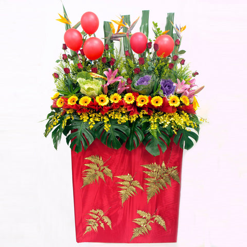 Gerbera daisies, lilies, ornamental cabbage, rose, bird of paradise, balloons and filler flowers arranged on a box stand for grand opening and congratulatory occasions by Katong Flower Shop for Singapore Delivery.