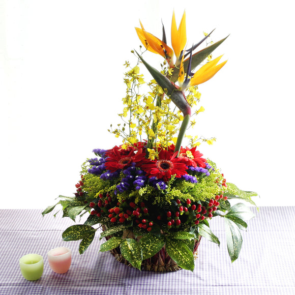 Birds of paradise flower, orchids, gerberas and hypericums table flower arrangement.