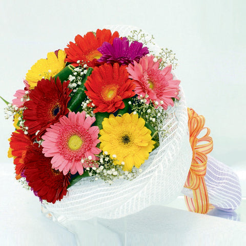 12 mixed gerbera daisy bouquet with filler flowers by Katong Flower Shop with free delivery to the whole of Singapore