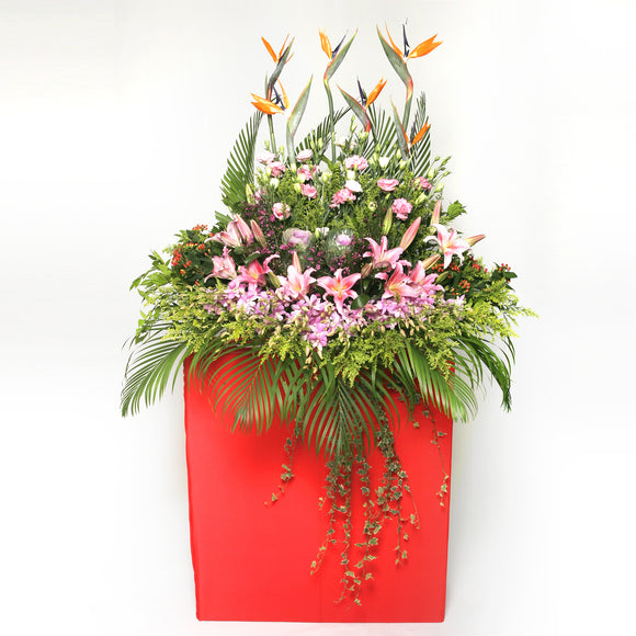 Orchid, rose, lilies, carnation, bird of paradise and filler flowers arranged on a box stand for grand opening and congratulatory occasions by Katong Flower Shop for Singapore Delivery.