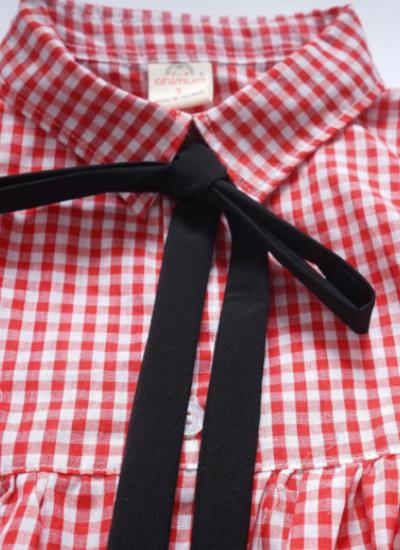Olivia Checkered Dress (Red)