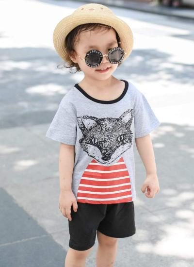 Wilde Fox Tee + Shorts Set