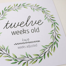 Load image into Gallery viewer, NEW 'I'm Growing!' (Eucalyptus) Age Premature Baby Milestone Cards
