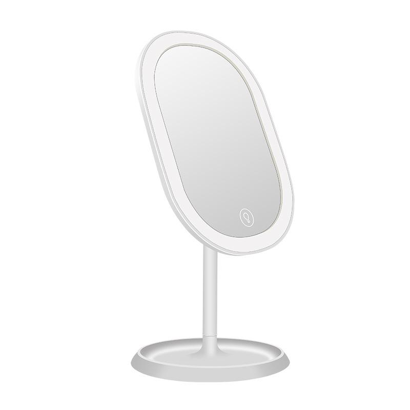 Perfect Gift -Oval Lighted Vanity Makeup Mirror with Rechargeable Natural White USB LED Daylight,