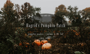 Hagrid's Pumpkin Patch