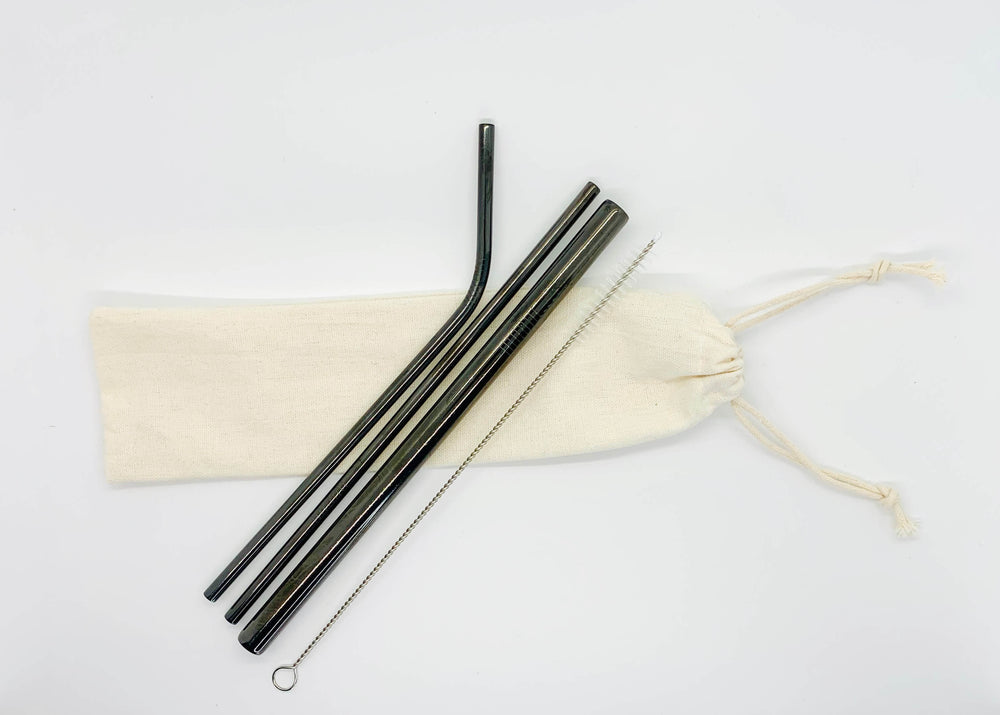 Stainless Steel Drinking Straw Kit