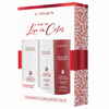 Healing ColorCare Holiday Gift Set: A Time To Live In Color