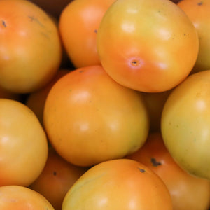 Tomatoes, Yellow