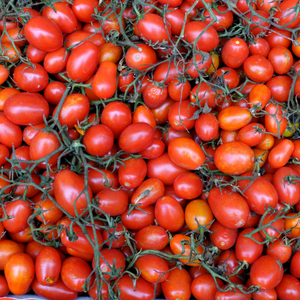 Tomatoes, Cherry Red