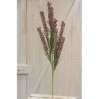 Giant Millet Spray Burgundy