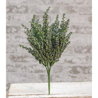 Blue Heather Bush 12""