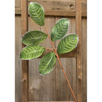 Flocked Magnolia Leaves Spray 20""