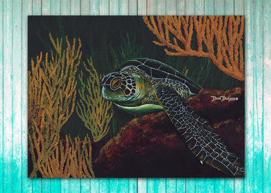 Black Sea Turtle - Dunleavyapparel