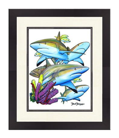 Caribbean Reef Sharks Original - Dunleavy Apparel