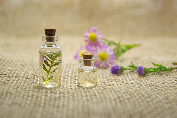 Essential oils in transparent glass bottles alongside flower and leaves