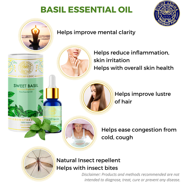 Basil (Sweet) | For Acne, Wrinkles, Hair Health, Air-purification, Mental clarity
