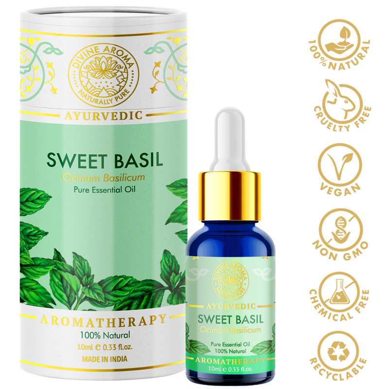 Divine aroma Sweet basil 100% pure and natural essential oil in luxury packaging and blue bottle with golden dropper cap for aromatherapy for skin,hair,aroma,bath,mental wellness