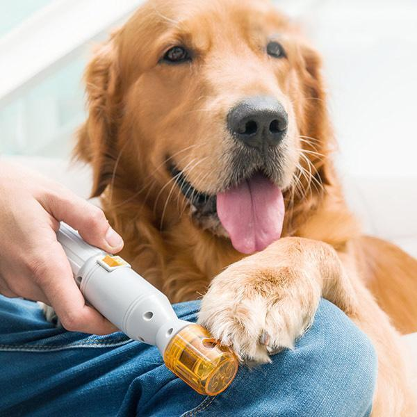 Trendy Fam 200003741 Yellow / M Premium Painless Nail Clipper for Pets - All Size Dogs & Cats