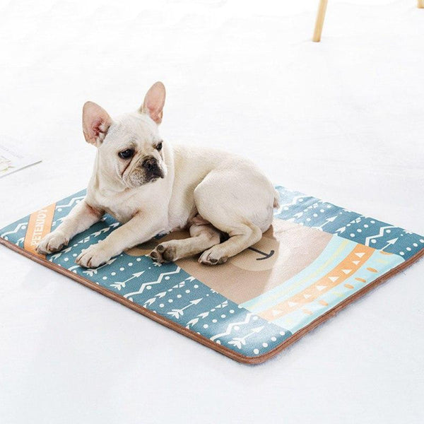 Trendy Fam 200003745 Reusable Pet Water/Urine Absorption Mat