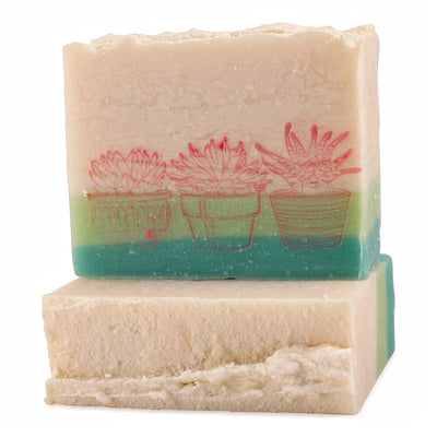 Succulent Soap | cactus flower, agave + jade - Canard Labs  handcrafted, all natural bar soap made in Oregon. Bar soaps and bath body products made with quality ingredients.