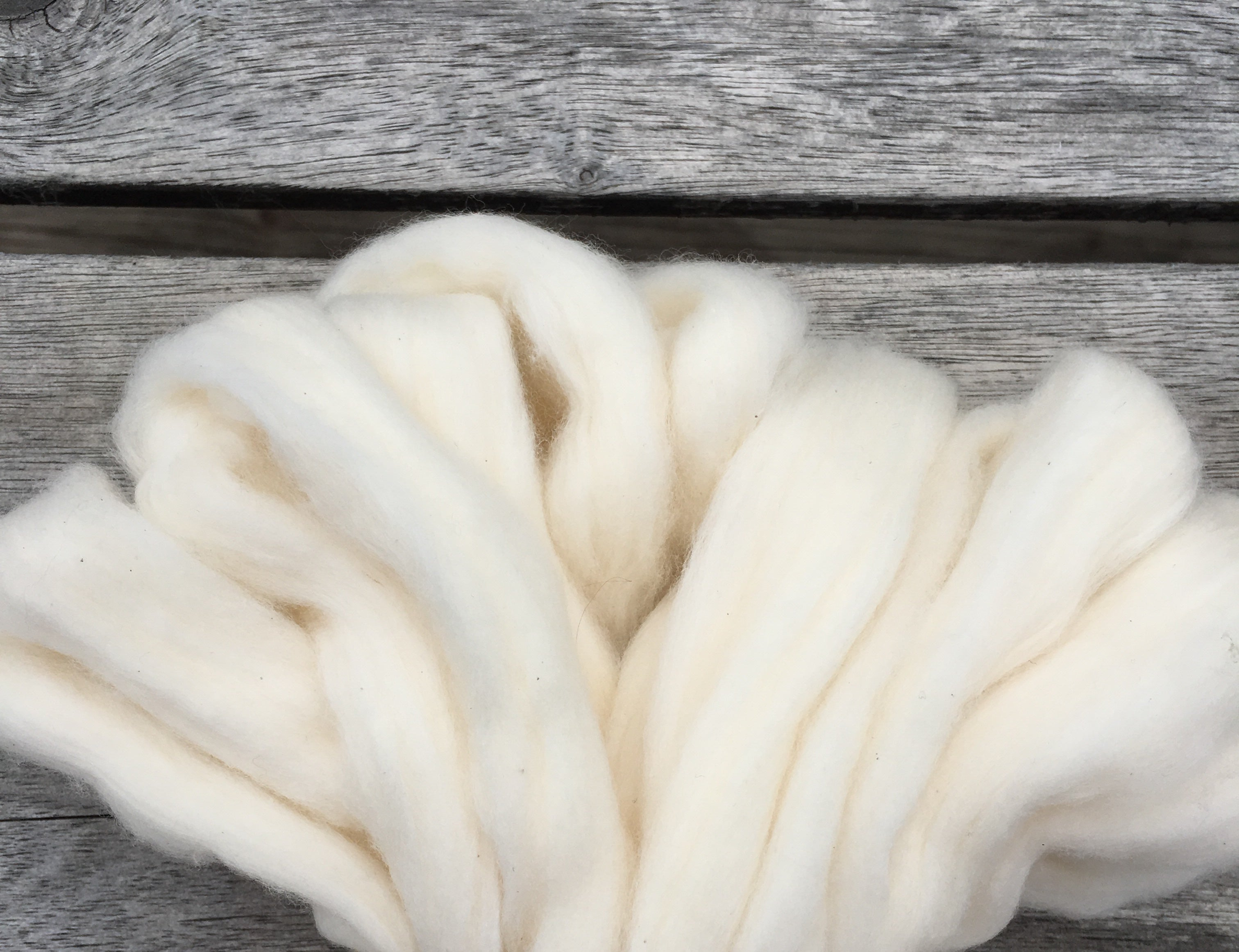 White Acala Cotton, Easy-to-Spin