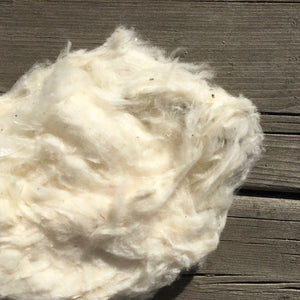 Ginned Acala Cotton