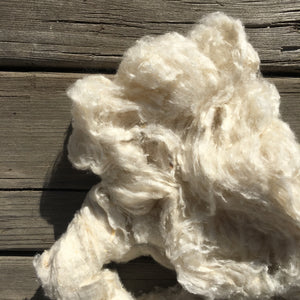 Mulberry Silk Noil, Natural White