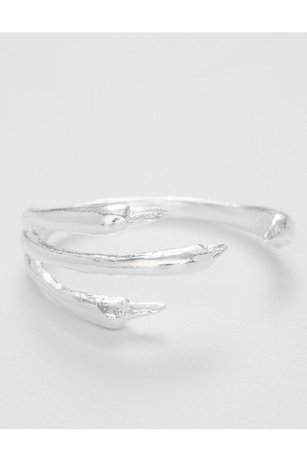 THE RAVEN RING SILVER