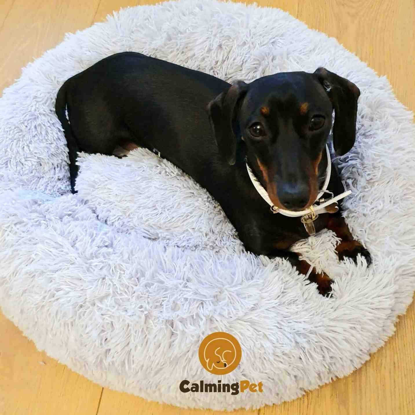 Anti Anxiety Comfy Pet Calming Bed UK