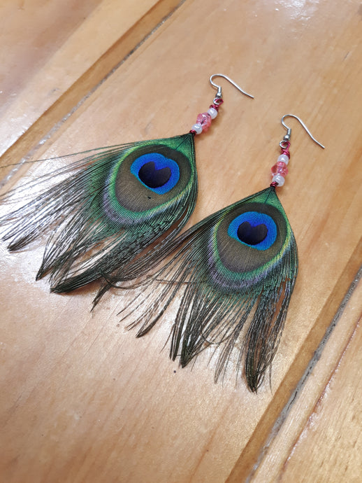 Pretty Pink Peacock Feather Earrings