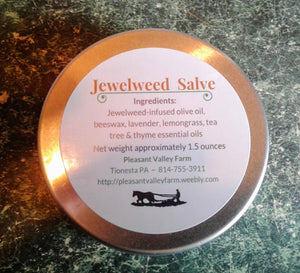 Jewelweed Salve- Natural Care for Bug Bites, Poison Ivy, Rashes and more