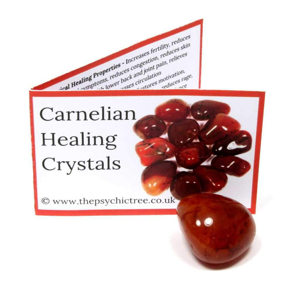 Carnelian Crystal & Guide Pack