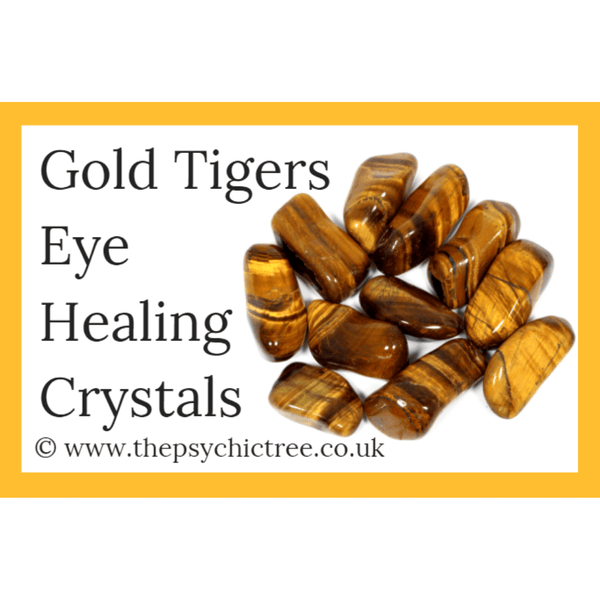 Gold Tigers Eye Guide Book