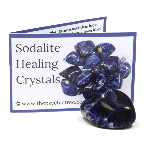 Sodalite Crystal & Guide Pack