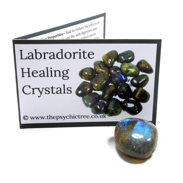 Labradorite Crystal & Guide Pack