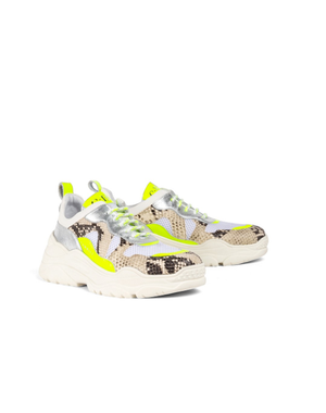 Sneakers fluor python