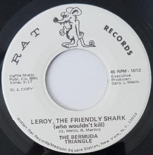 Load image into Gallery viewer, Bermuda Triangle - Leroy, The Friendly Shark (Who Wouldn't Kill)