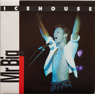 Icehouse - Mr.Big