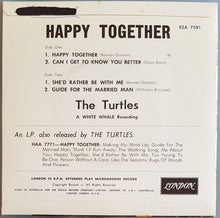 Load image into Gallery viewer, Turtles - Happy Together