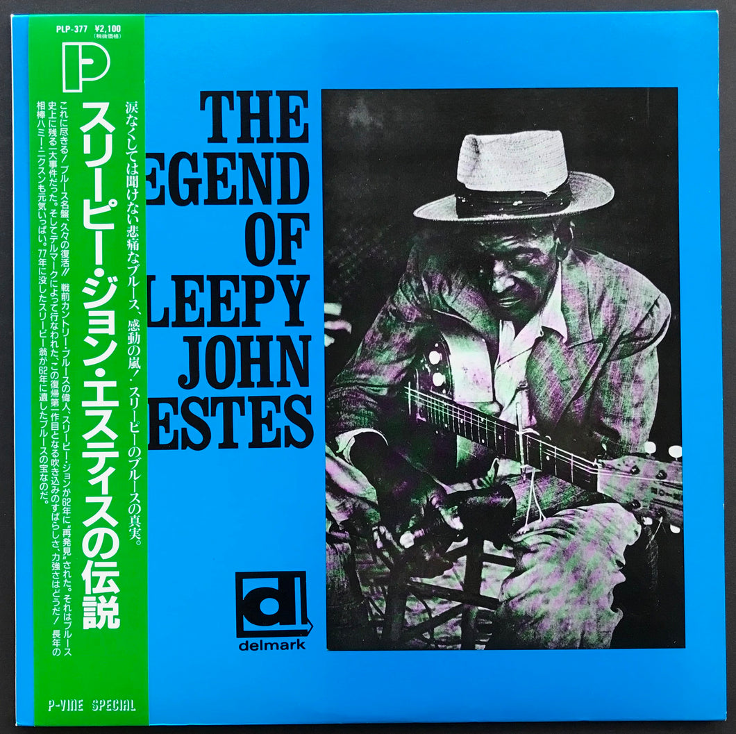 The Legend Of Sleepy John Estes