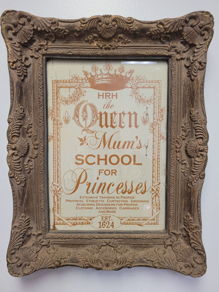 Mums School For Princesses Framed Print