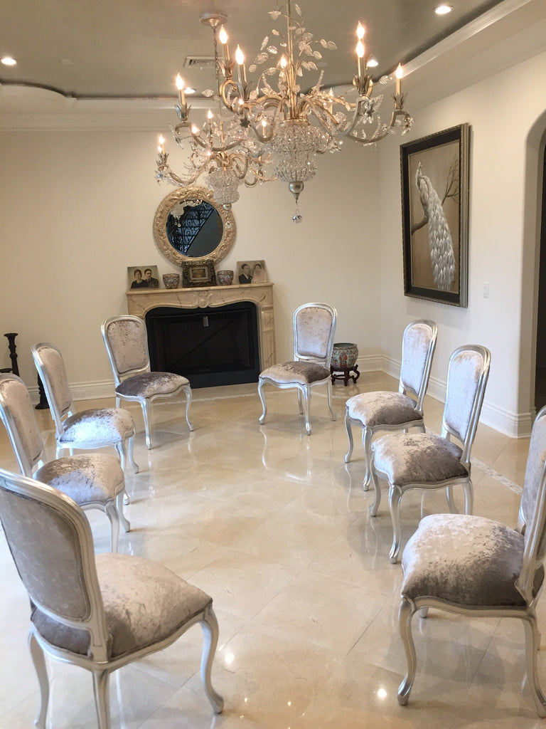 Fabulous French Side Chair - Silver & Silver Velvet - Client Photo