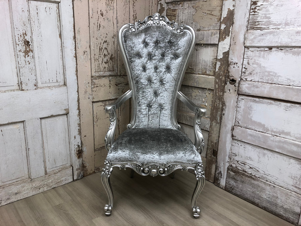 Gryphon Reine Arm Chair - Silver & Silver Crushed Velvet